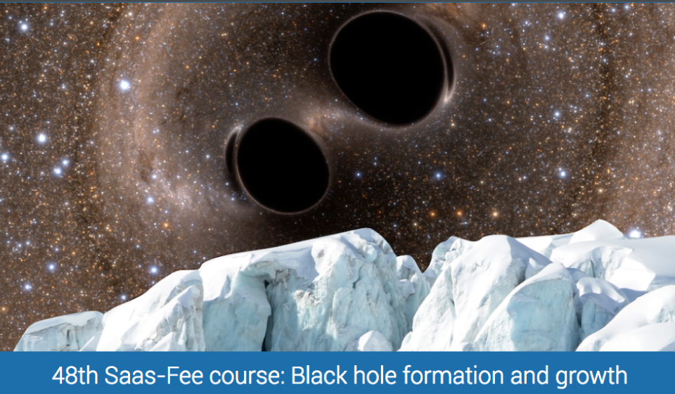 48th Saas-Fee Advanced Course: Black hole formation and growth