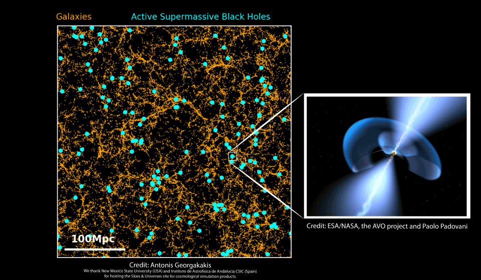 #AthenaNuggets: Connecting supermassive black-holes with the cosmic web
